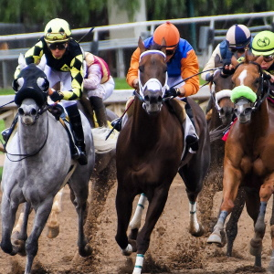 French Horseracing will Start again in May